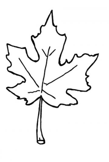 Fall Leaf Clip Art Black And White Free Clipart
