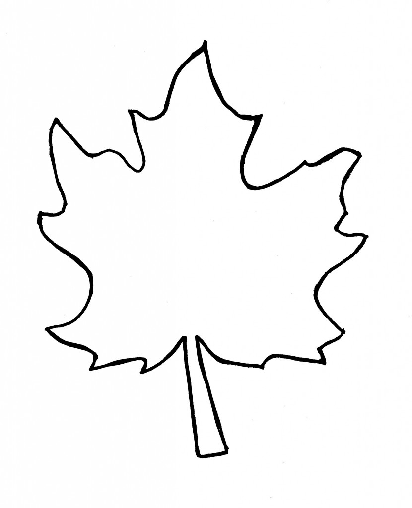 best leaf outline 8634 clipartion com