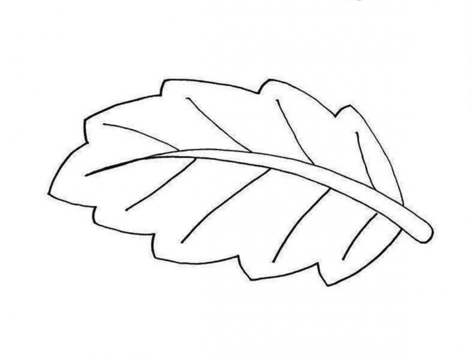 Best Fall Leaves Clip Art Black And White #21706 ...