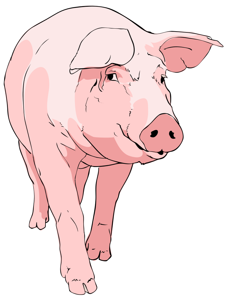 File Pig Clipart Wikimedia Commons