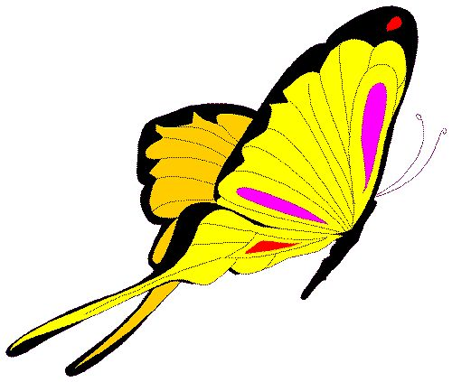 Flying Butterfly Clipart Free Clipart Images