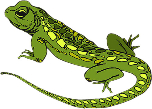 lizard clipart for personal choose your favorite of lizard clipart and ...
