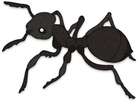 Free Ant Clipart Black Ants