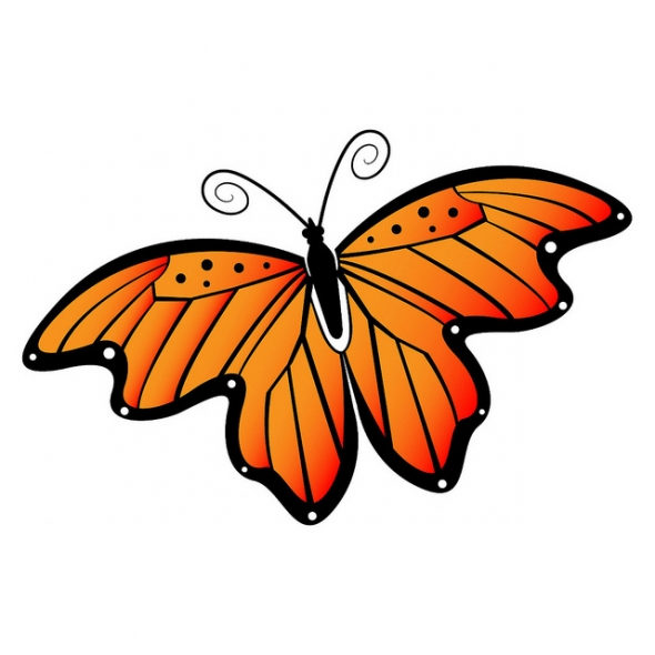 Free Butterfly Clip Art Graphics Free Clipart Images