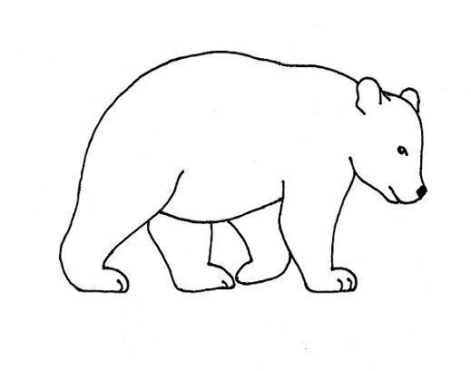 Free Coloring Pages Of Outline Of A Bear