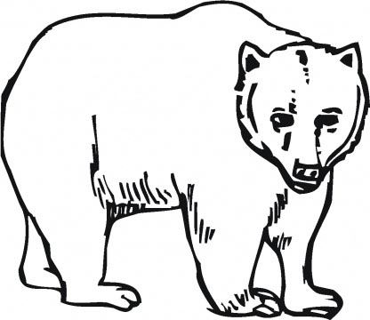 Baby brown bear coloring pages