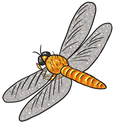 Best Dragonfly Clipart #12573 - Clipartion.com