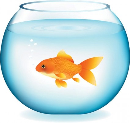 Free Goldfish Vector Free Vector For Free Download About Free