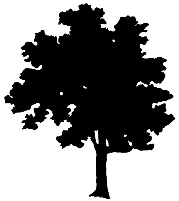 Free Oak Tree Silhouette Clip Art