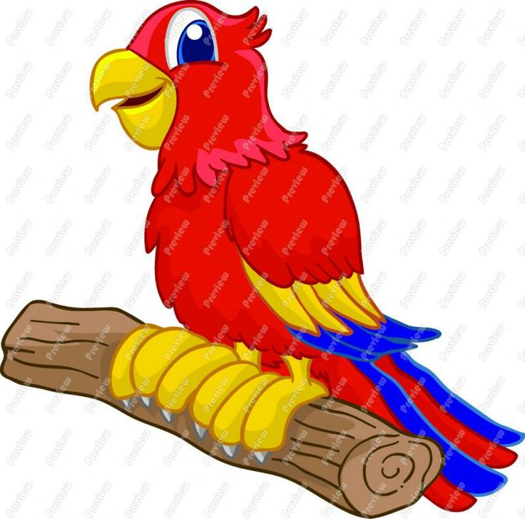 Free Parrot Clip Art Cartoon Parrot Clip Art Bird Theme