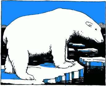 Free Polar Bear Clipart 1 Page Of Public Domain Clip Art