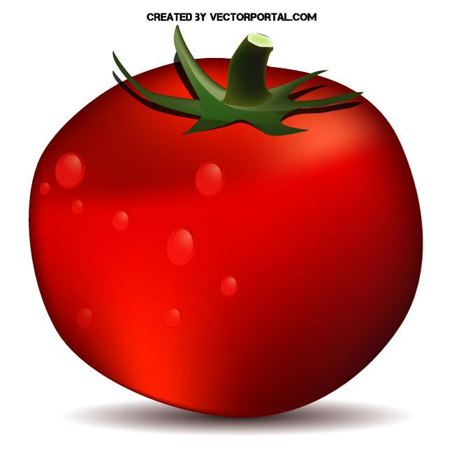 Free Red Tomato Clipart Free Clip Art Images