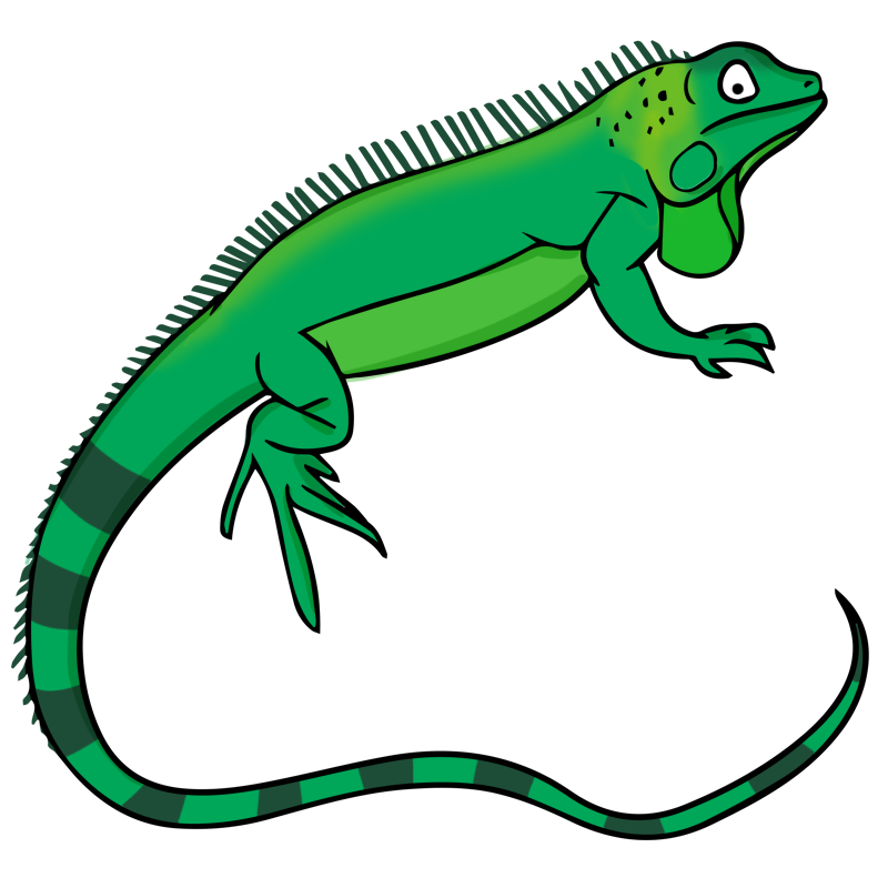 Free To Use Amp Public Domain Iguana Clip Art