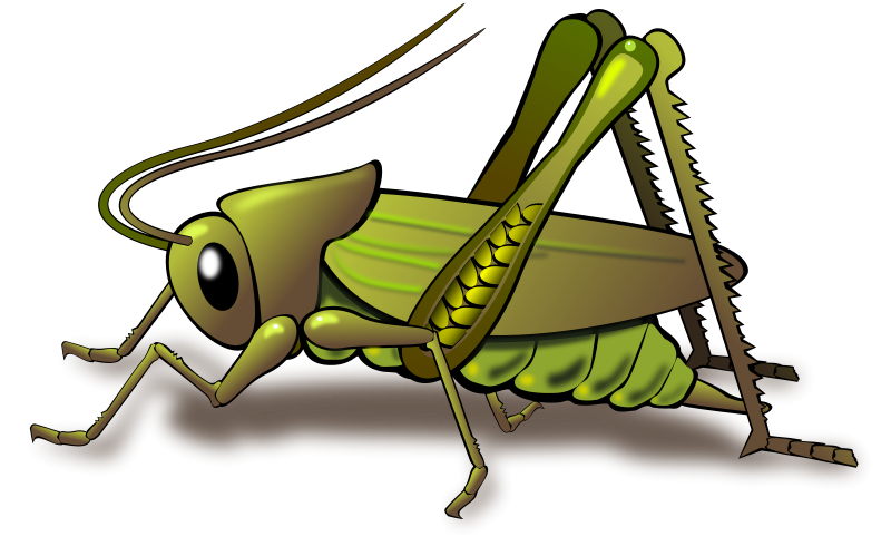 Free To Use Amp Public Domain Insects Clip Art Page 5