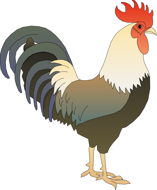 Free To Use Amp Public Domain Rooster Clip Art