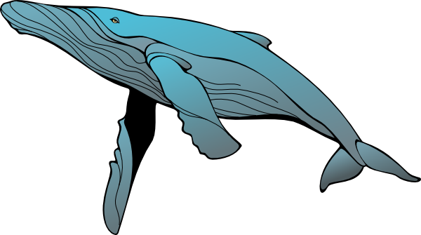 Free To Use Amp Public Domain Whale Clip Art Page 2