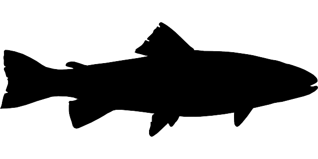 Free Vector Graphic Fish Black Fishing Silhouette Free Image