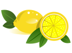 Fresh Lemon And Lemon Slice Realistic Vector Clip Art Freevectors