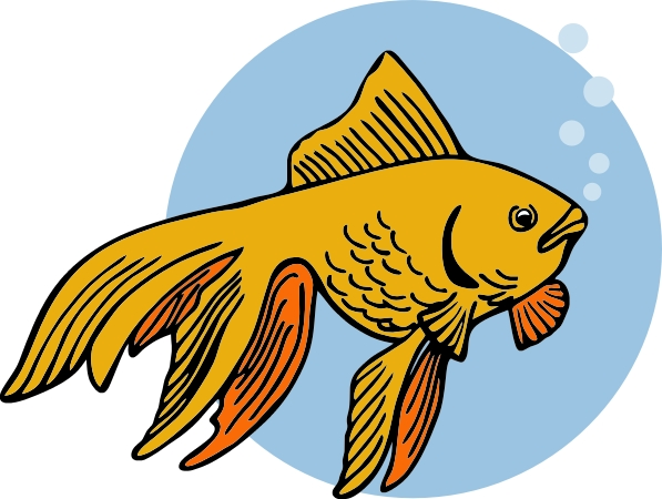 Goldfish Vector Clipart Free Clip Art Images