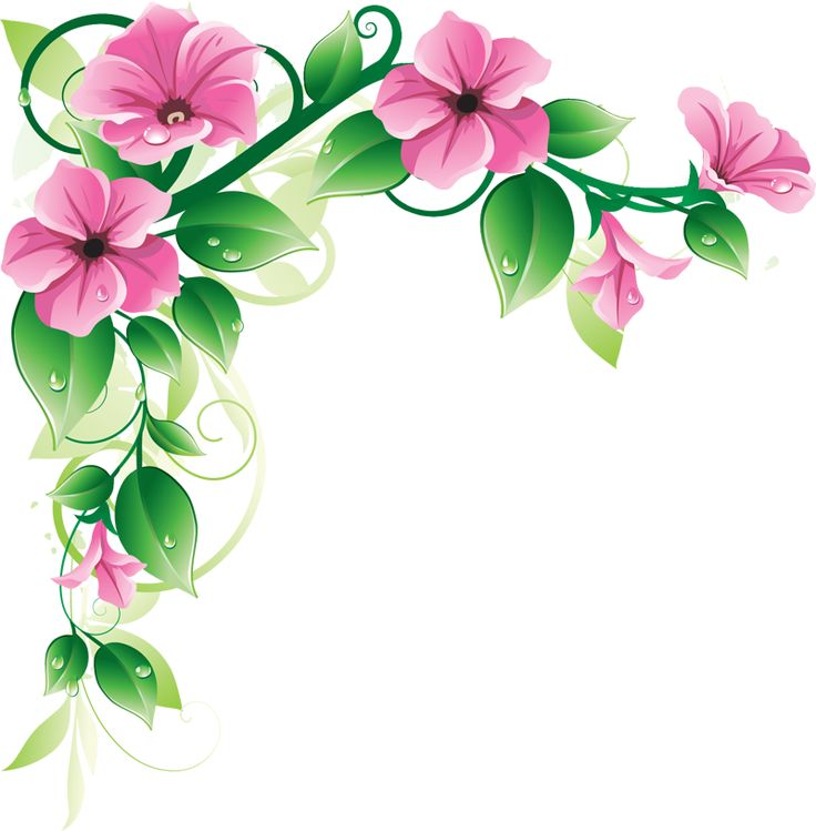 Grab This Free Clipart To Celebrate The Summer Flower Borders