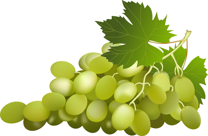 Grapes Clipart 3 Png