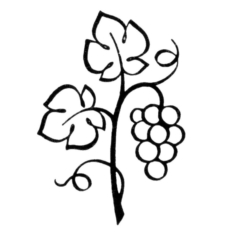 Grapevine Clipart Free Clipart Images