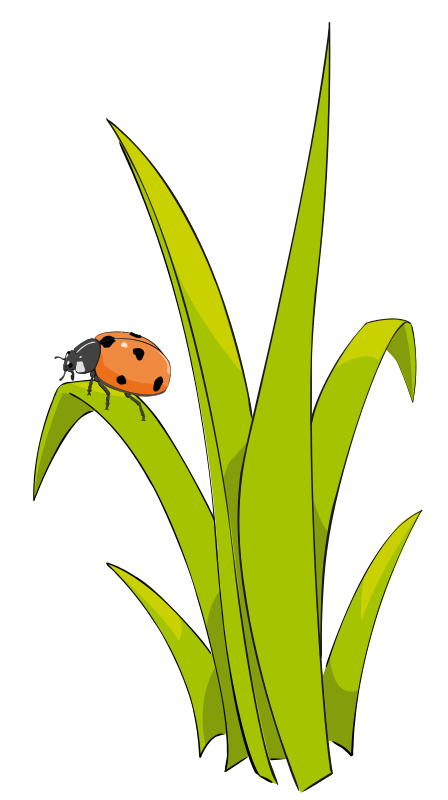 Best Grass Clipart #10830 - Clipartion.com