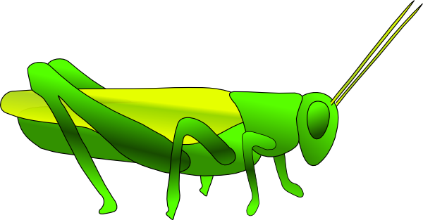 Grasshopper Clipart Images Free Clipart Images