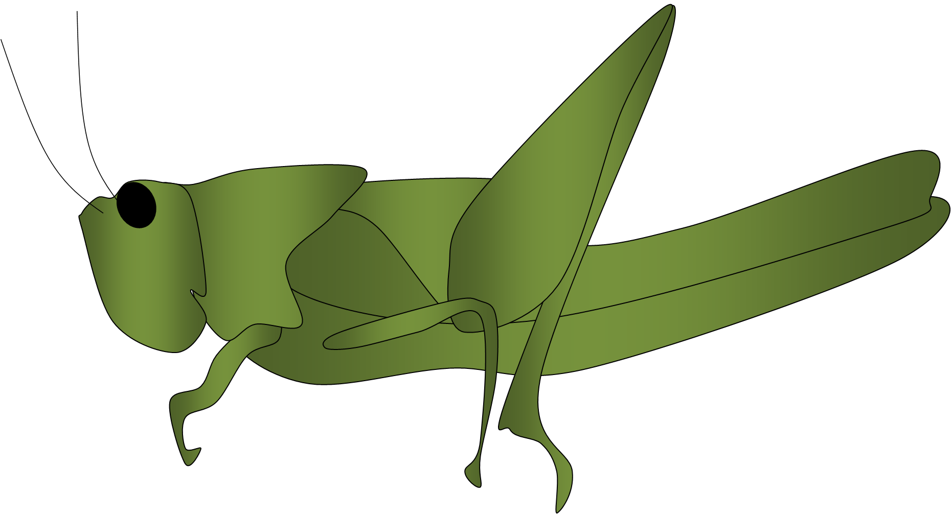 Grasshopper Outline Free Clipart Images