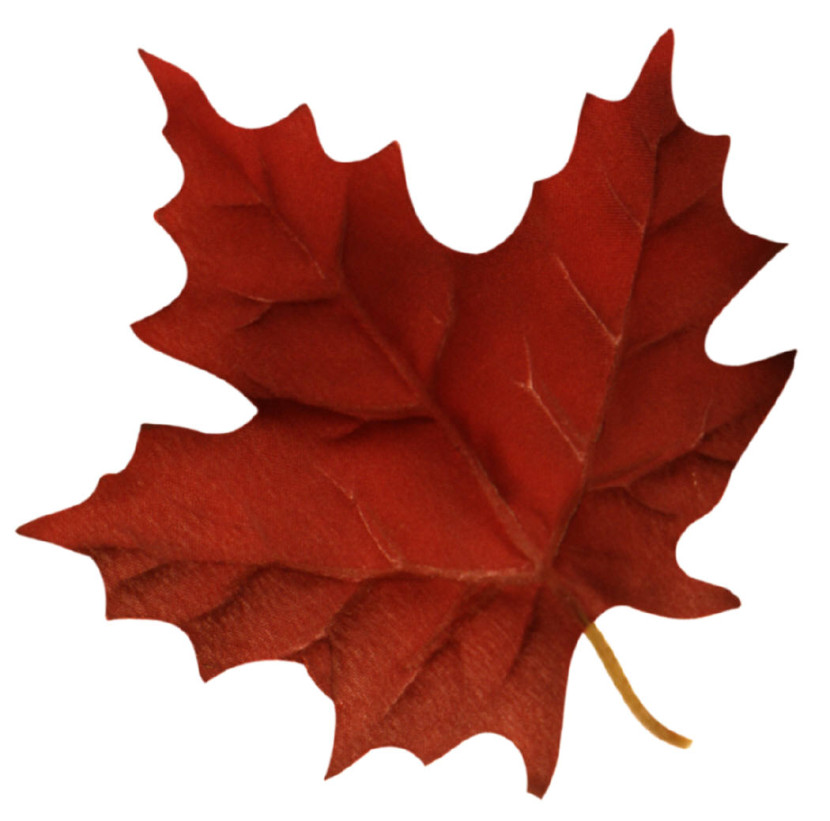 maple leaf clip art clipartion com leaf clip art free leaf clip art outline