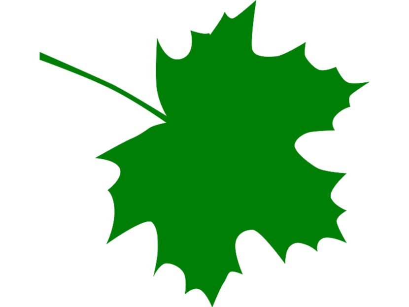 Green Maple Leaf Clipart Free Clip Art Images