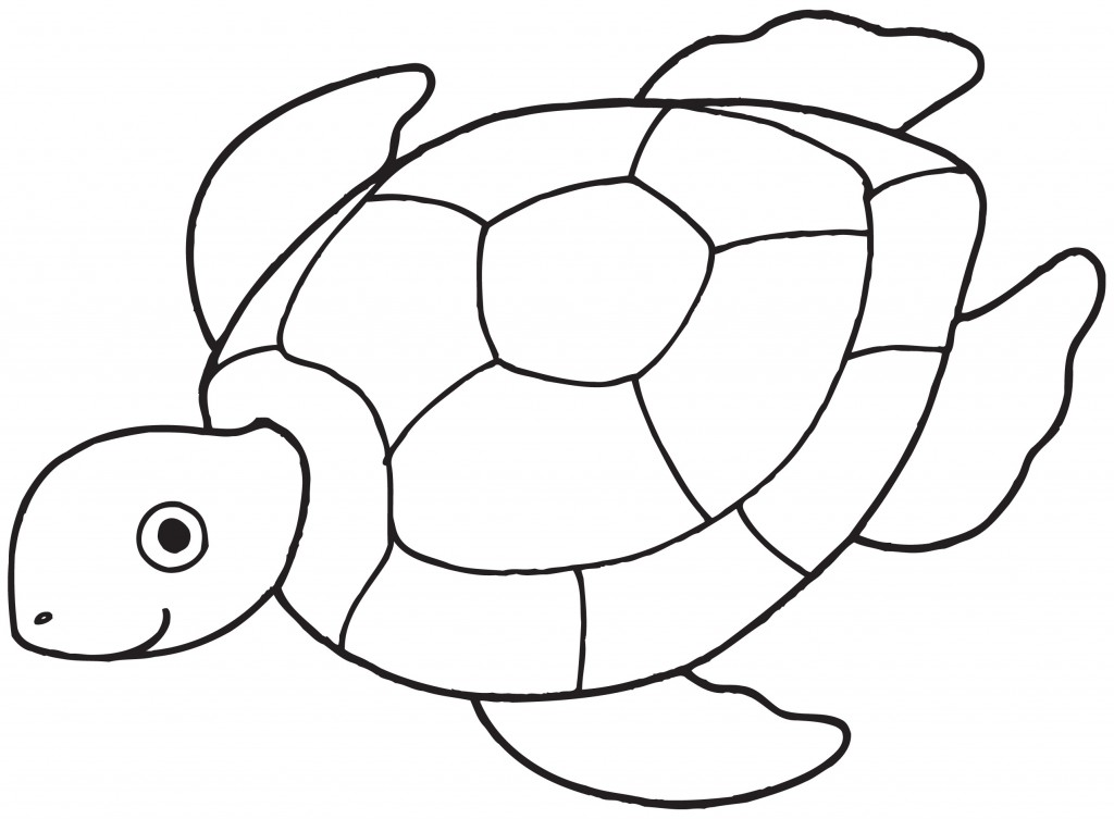 Green Sea Turtle Clip Artjpg Clipart Free Clip Art Images
