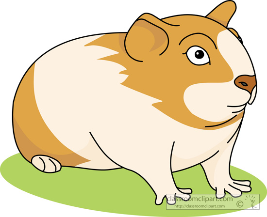Hamster Clip Clipart Free Clip Art Images