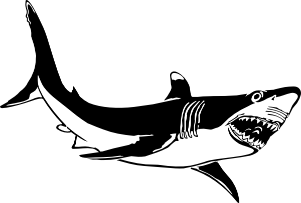Happy Shark Clipart Free Clipart Images