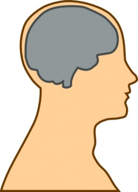 Head With Brain Clipart Free Clip Art Images