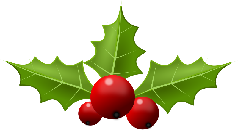 Holly5 Png