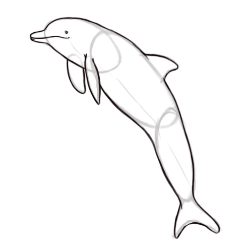 Dolphin Outline - Clipartion.com