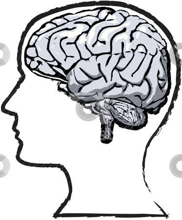 Human Brain Clipart Free Clip Art Images