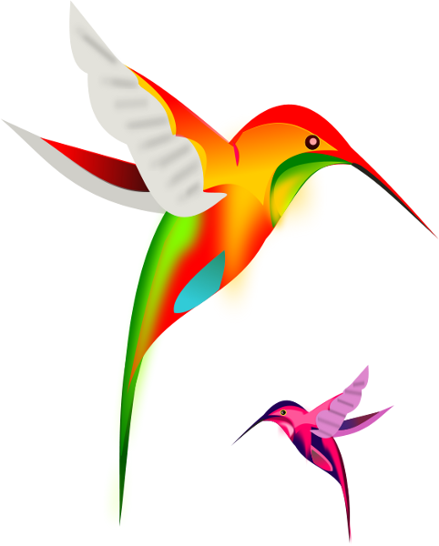 Hummingbird And Flowers Free Clipart Free Clip Art Images