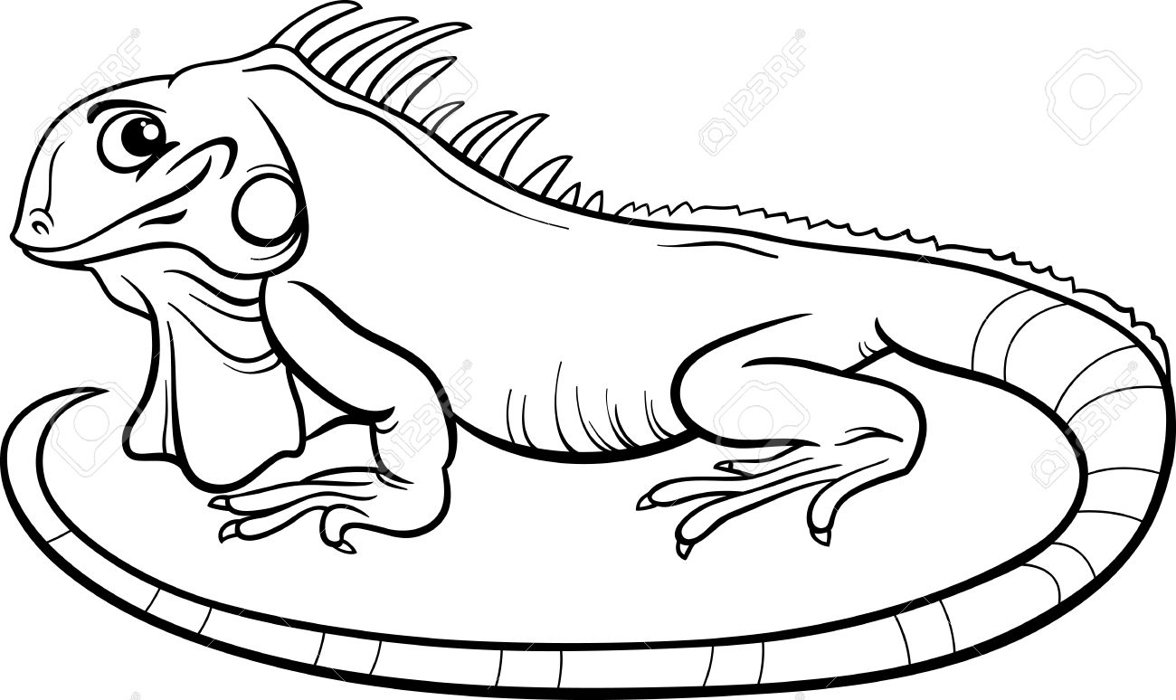 Iguana Clipart Black And White Iguana Coloring Page