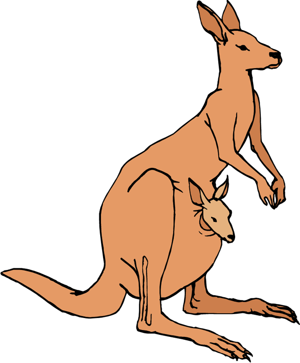 Kangaroo Clipart Black And White Free Clipart Images