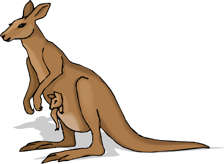 Kangaroo Clipart Free Clipart Images