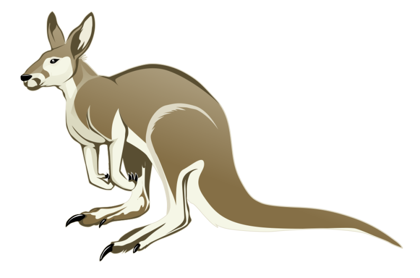 Kangaroo Clipart - Clipartion.com
