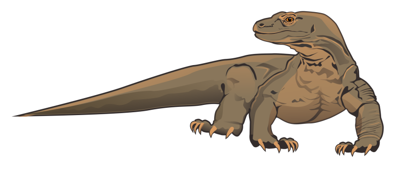 Komodo Dragon Clip Art Free Free Clipart Images