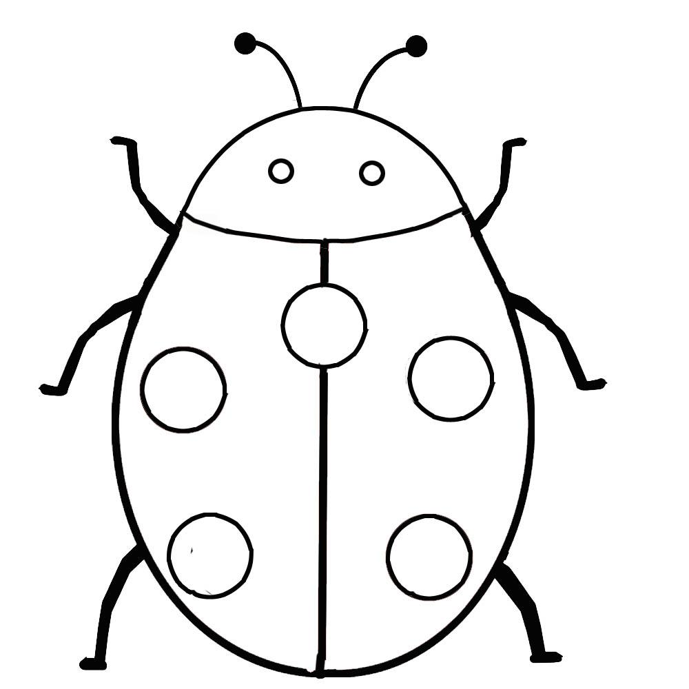 ladybug coloring pages drawing kids - Outline Pictures For Coloring