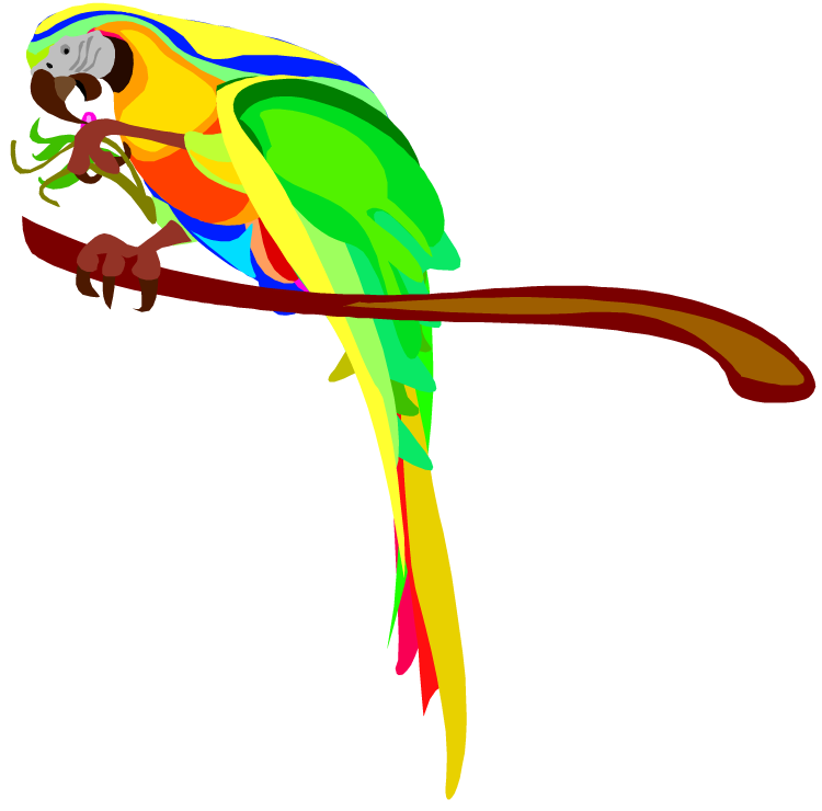 Best Parrot Clipart #16729 - Clipartion.com