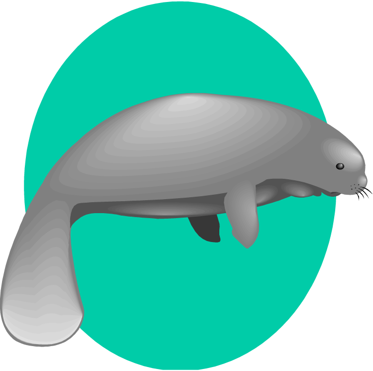 Manatee Clipart Free Clip Art Images