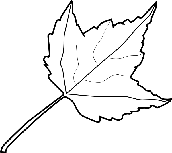 Maple Leaf Outline Clip Art At Vector Clip Art Online