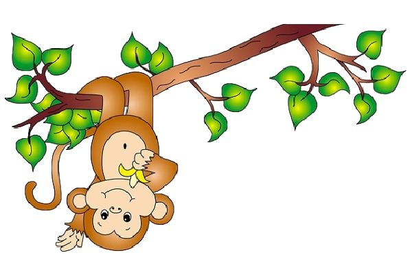 Monkeys On Pinterest Monkey Cute Monkey And Illustrations Posters