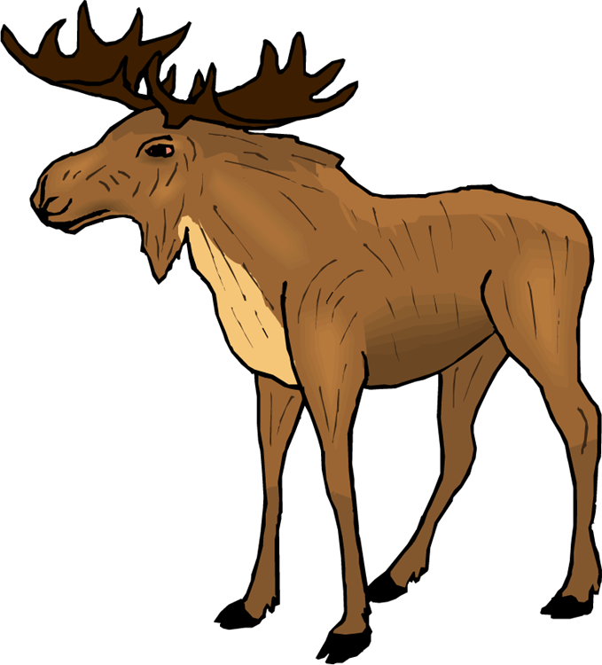 Moose Clipart Cartoon Free Clipart Images